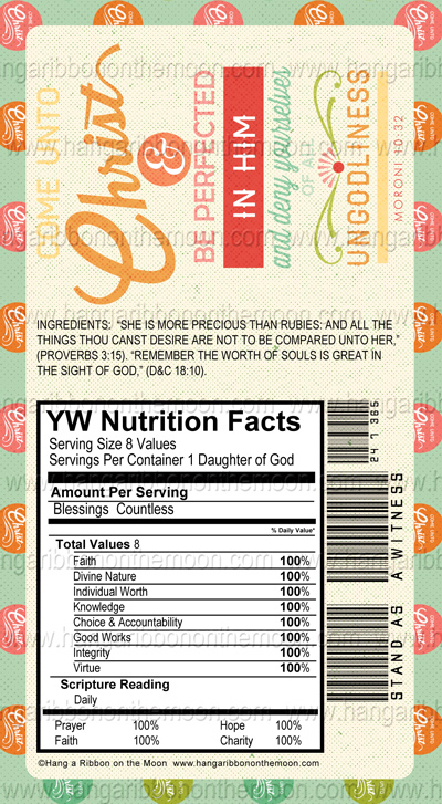 YW/YM Candy Bar Wrappers [6.8-ounce Giant Hershey's/Symphony Bars ...