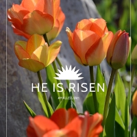 #Hallelujah Free Printables for Easter